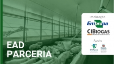 Biogás: da produção à viabilidade econômica